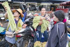 THAILAND BURIRAM SATUEK MARKET Royalty Free Stock Images