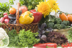 Vegetable Food Objects Stock Photography