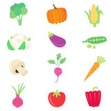 Vegetable food set Stock Images