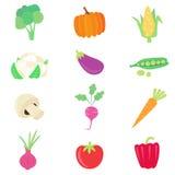 Vegetable Food Set Stock Images