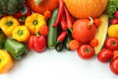 Vegetable frame Royalty Free Stock Image