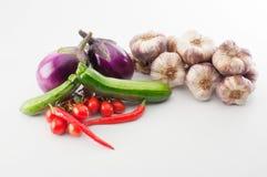 Vegetable. Fresh vegetable from the garden Stock Photo