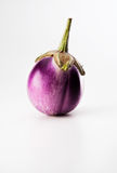 Vegetable. Fresh vegetable from the garden Royalty Free Stock Photography