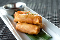 Vegetable fried spring rolls close up Stock Photography