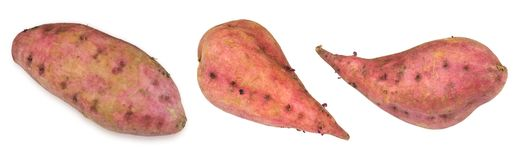 Fresh Raw Sweet Potatoes on White Background Stock Images