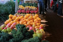 Vegetable and fruit stand at Charleston Saturday market royalty free stock image