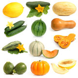 Vegetable and fruits collection (Cucurbitales) Royalty Free Stock Photos