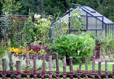 Vegetable garden royalty free stock images