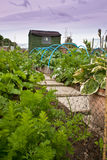 Vegetable allotment garden with shed Stock Photo