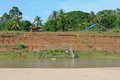 Vegetable garden area in bamboo fence along the Mekong river ban Stock Photography