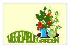 Vegetable garden banner. Banner a vegetable garden vegetables in the garden, and text Stock Images