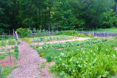 Vegetable Garden at Booker T. Washington National Monument. Franklin County, VA – June 18th: The vegetable garden located on the ground of the Booker T Stock Photos