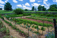 Vegetable Garden at Booker T. Washington National Monument Stock Photography