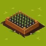 Vegetable Garden Box with Garlic Set 10 Royalty Free Stock Photo