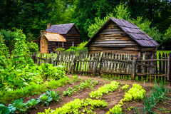 Vegetable garden and buildings at the Mountain Farm Museum in th Stock Image