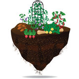 Vegetable garden on floating chunk of earth. EPS 10 royalty free vector illustration Stock Photography