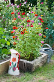 The vegetable garden. And flower-bed Stock Image