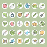 Vegetable garden and  Gardening equipment ,vector icon Royalty Free Stock Photography