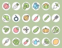 Vegetable garden and  Gardening equipment ,vector icon Stock Image