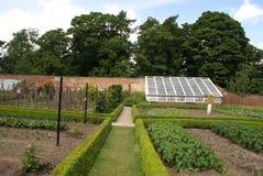Vegetable garden. Kitchen garden Stock Photography