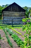 Vegetable Garden With Log Barn stock photo