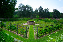 Vegetable Garden at Mount Vernon Royalty Free Stock Photo