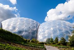 Vegetable garden outside geodesic biome domes at the Eden Project. Rows of salad vegetables planted in a garden at the Eden Project, Cornwall, UK stock photo