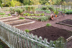 Vegetable garden plots Royalty Free Stock Photography