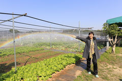 Vegetable garden rainbow at yuanqian community, amoy city, china Royalty Free Stock Photography