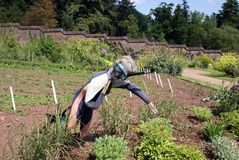 Vegetable garden with a scarecrow, plants, and herbs Stock Photos