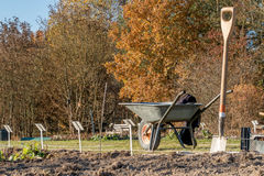 Vegetable garden and wheelbarrow Royalty Free Stock Image