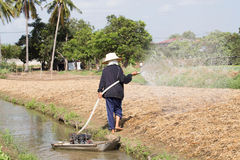 Vegetable gardeners are watering Royalty Free Stock Photography