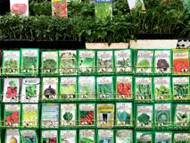 Vegetable gardening seeds at Nursery Royalty Free Stock Photography