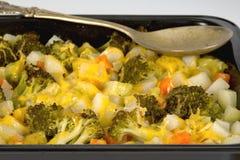 Vegetable gratin Royalty Free Stock Photos