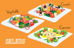 Vegetable, Greek, Caesar Salads. Vector illustration. Vegetable, Greek, Caesar Salads Stock Photography