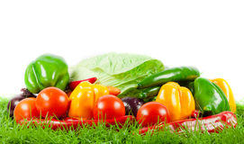 Vegetable on green gras on isolated white  background Stock Images