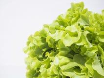 Vegetable Royalty Free Stock Photos