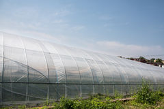 Vegetable greenhouses Stock Photo