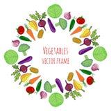 Vegetable hand drawn set.  vegetables frame decoration vector illustration. Vegetable stylized collection Stock Photo