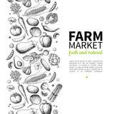 Vegetable hand drawn vintage vector frame illustration. Farm Market poster. Vegetarian set of organic products. Vegetable hand drawn vintage vector illustration Stock Images