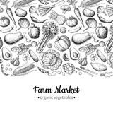 Vegetable hand drawn vintage vector illustration. Farm Market poster. Vegetarian set of organic products. Detailed food drawing. Great for menu, banner, label Stock Images
