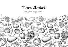 Vegetable hand drawn vintage vector illustration. Farm Market poster. Vegetarian set of organic products. vector illustration