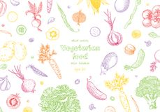 Vegetable hand drawn vintage vector illustration. Vegetarian set of organic products. Can be used for wrapping paper