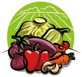 Vegetable harvest Stock Image