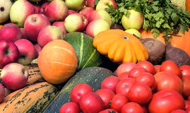 Vegetable harvest is sold at the fair. Stock Images