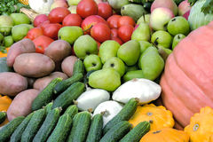 Vegetable harvest is sold at the fair. Royalty Free Stock Image