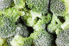 Vegetable healthy food background. Broccoli frozen vitamins Royalty Free Stock Photography