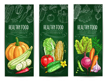 Vegetable, healthy food chalk sketch banner set Royalty Free Stock Images