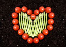 Vegetable Heart Stock Images