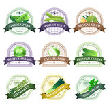 Vegetable and Herbs Flat Labels Set Royalty Free Stock Images